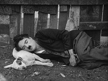 http://www.dvdclassik.com/upload/images/critique-une-vie-de-chien-chaplin1.JPG